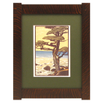 Classic Mission Tenon Wood Frames